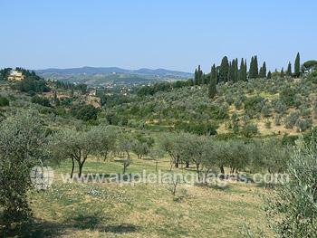 Florence est entourée de beaux paysages toscans !