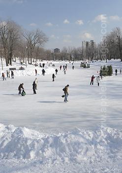 Parc de Montréal en hiver