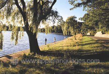 Jogging dans un parc de Montréal