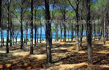 Campus privé et plage