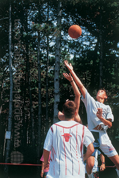 Volley-ball à l'école