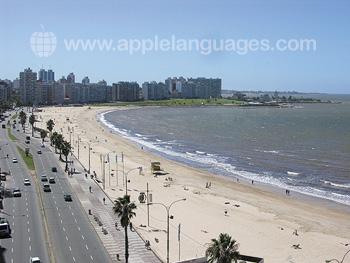 La plage de Montevideo