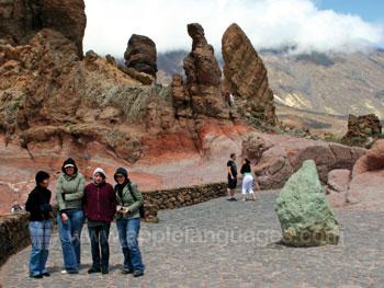 À la découverte de Tenerife