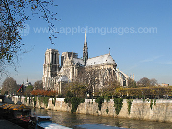 L'impressionnante Notre-Dame