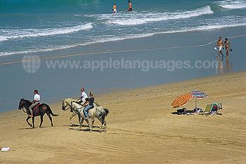 Des plages préservées